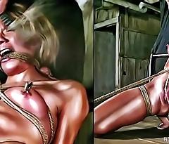 BDSM Art Bondage Cartoons
