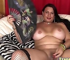 Busty tranny pornstar in stockings tugs cock